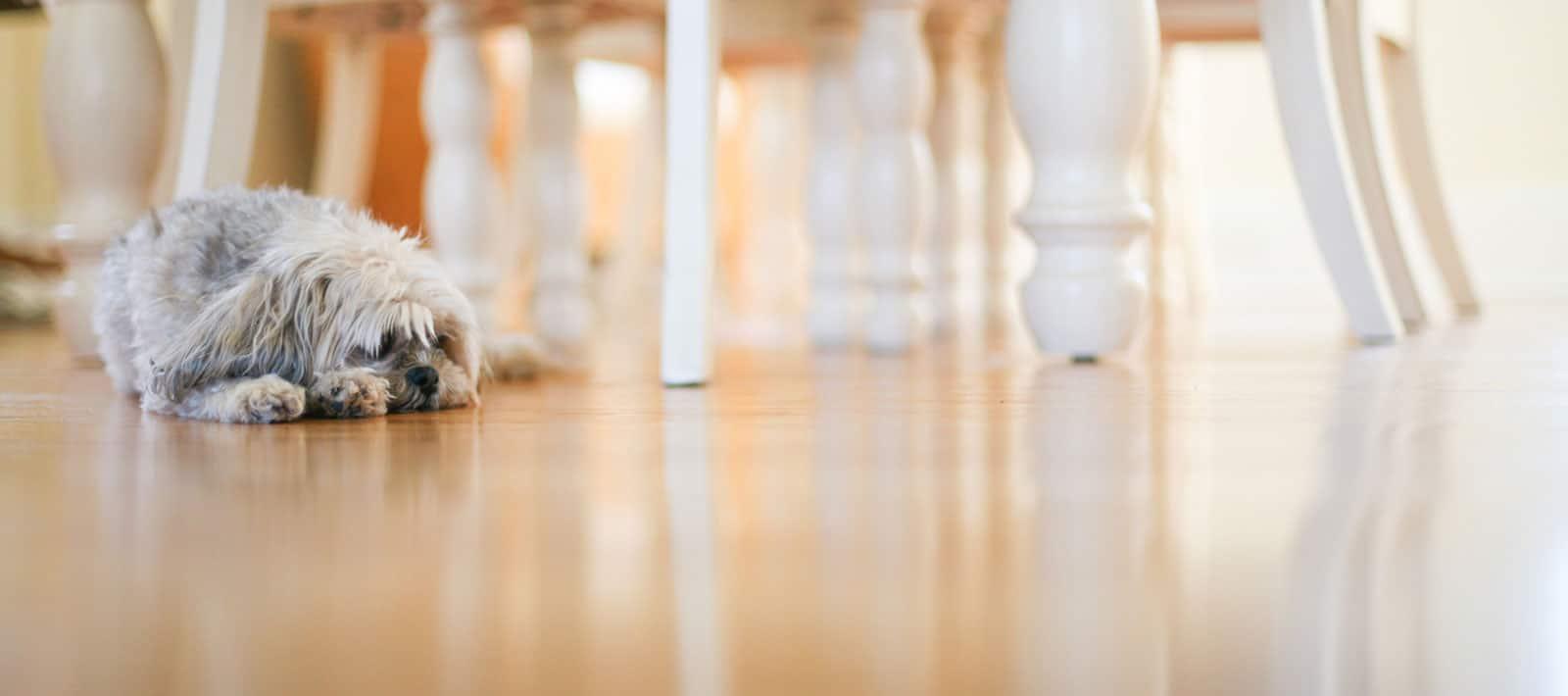 home flooring alexandria va